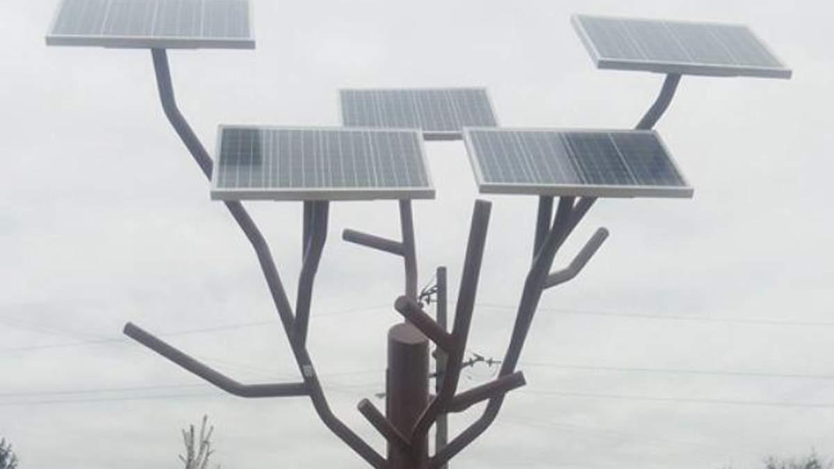 """""""Сонячне дерево"""" з'явилось на Черкащині"""