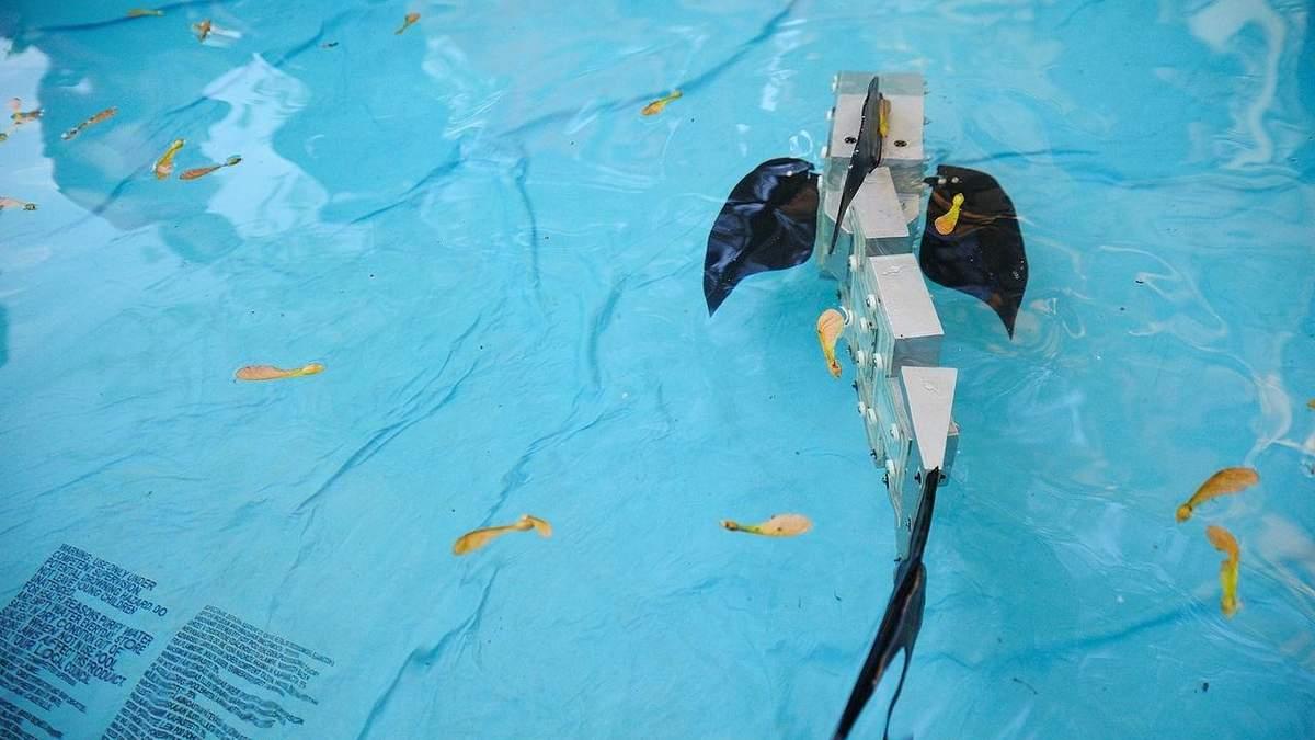 Старшая модель робота-рыбы