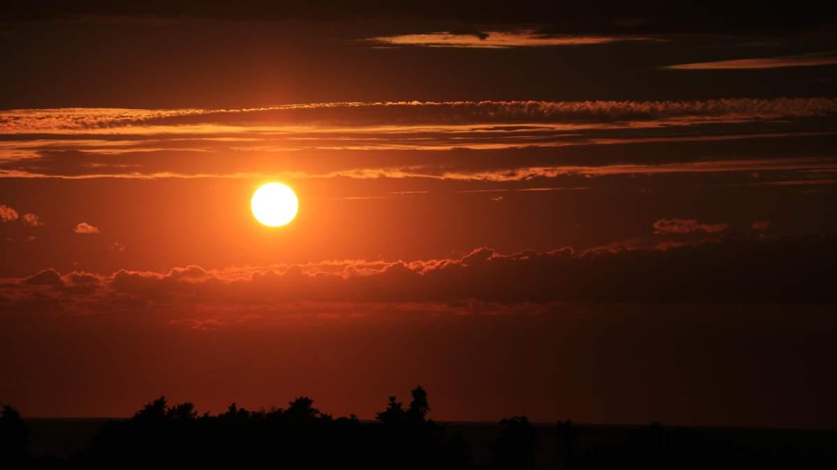 Астрономи заявили про спалахи на Сонці у найближчі дні