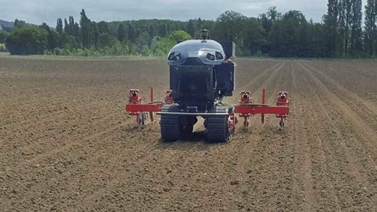 Французи представили роботів, які спростять процес вирощування кукурудзи