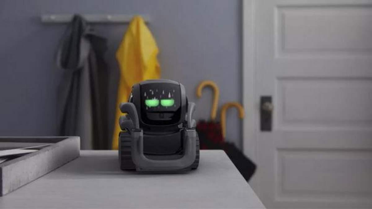 Домашній робот Vector