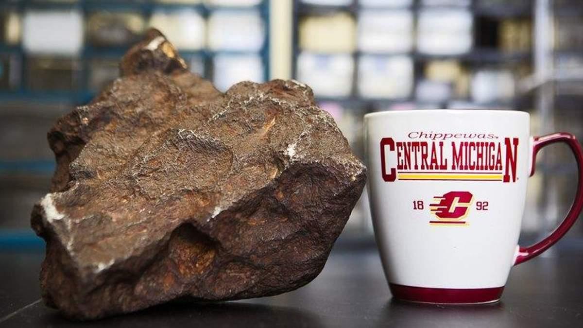 У США чоловік десятиліттями підпирав двері рідкісним метеоритом