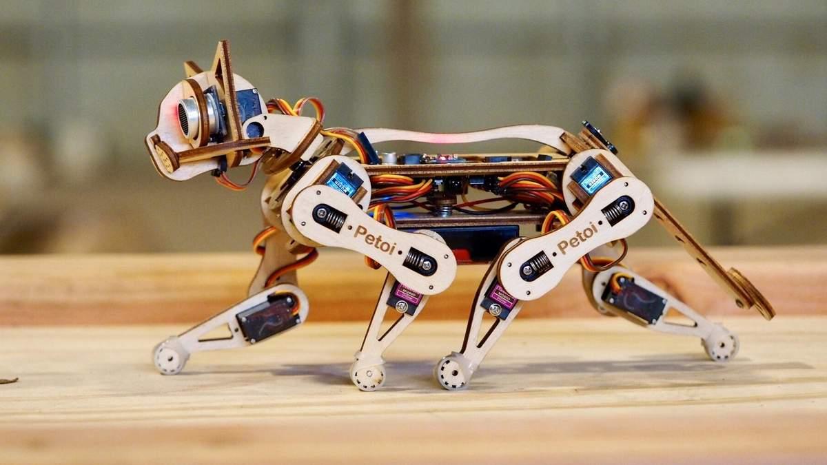 Створили роботизовану кішку, яка може навчатись