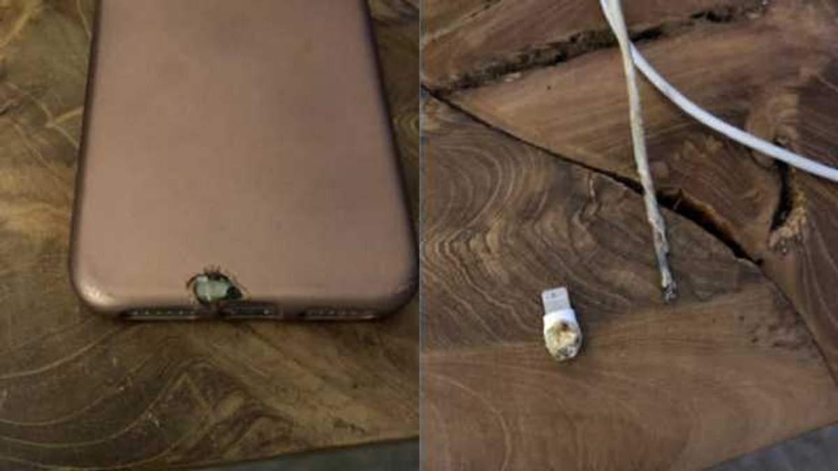 iPhone X загорелся во время зарядки