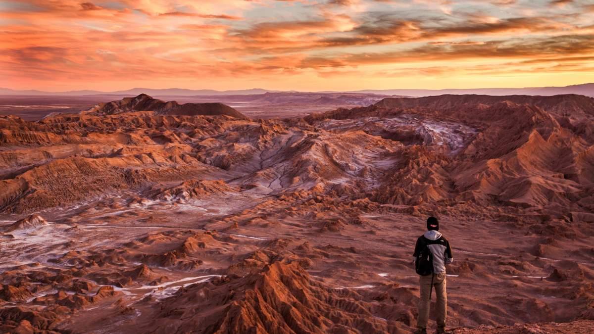 На все деньги: Илон Маск назвал цену полета на Марс