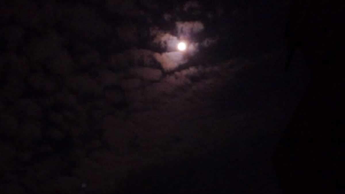Рожевий повний місяць – над Землею зійшов незвичний  супутник