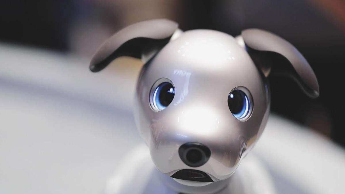 Роботизированный пес компании Sony