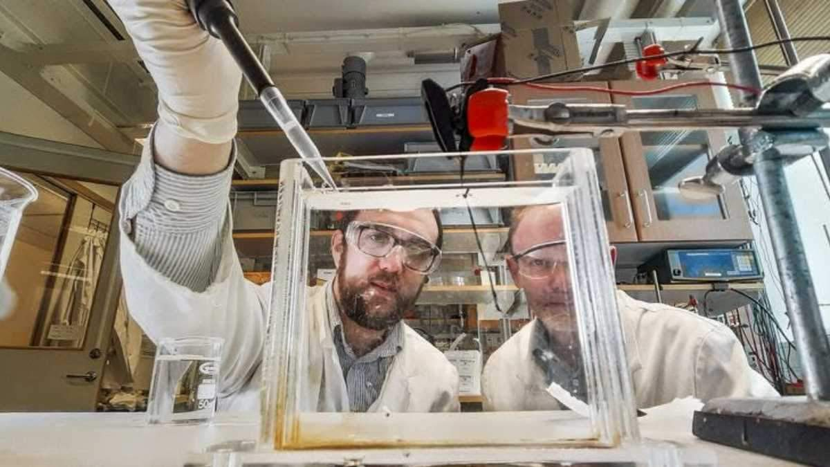 Ученые научили искусственные мышцы функционировать как человеческие