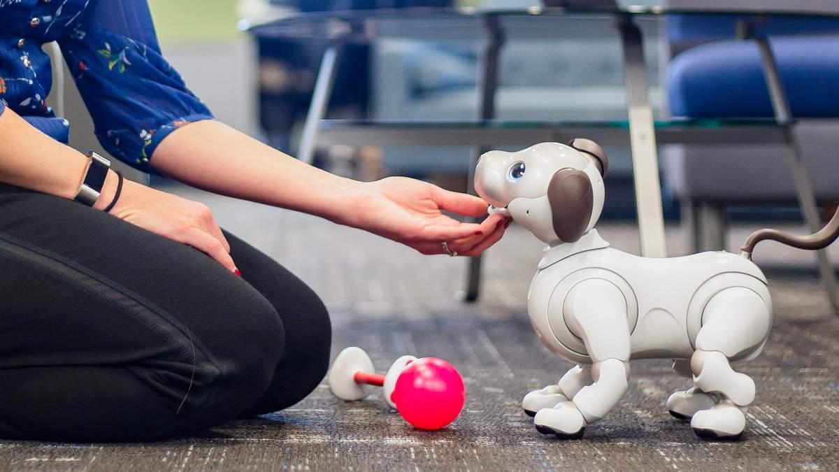 Роботів-тварин зробили більш реалістичними