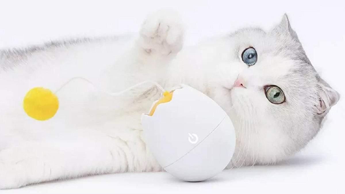 Xiaomi випустила інтерактивну іграшку для котів