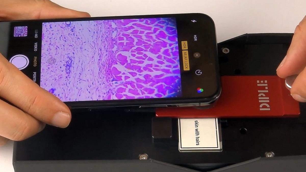 Создан микроскоп для смартфона с 1000-кратным зумом: видео