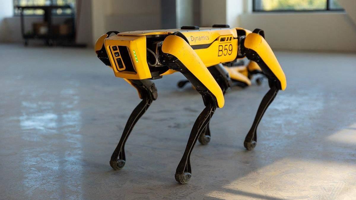 Разрушитель мифов испытал возможности робопса Boston Dynamics