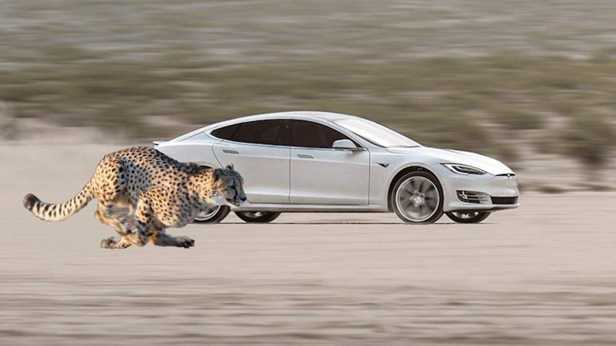 Електромобілі Tesla стартуватимуть з місця ще швидше