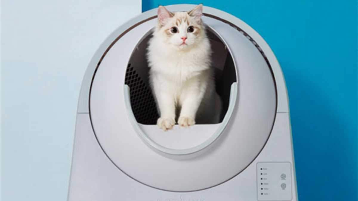 Умный туалет для кошек от Xiaomi: что это такое и как работает