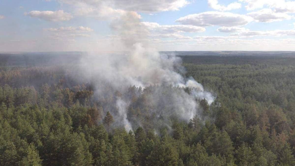 Пожары в Луганской области видно из космоса: фото со спутника