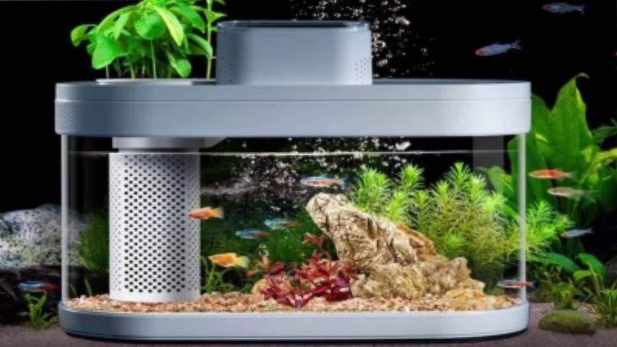 Розумний акваріум від Xiaomi