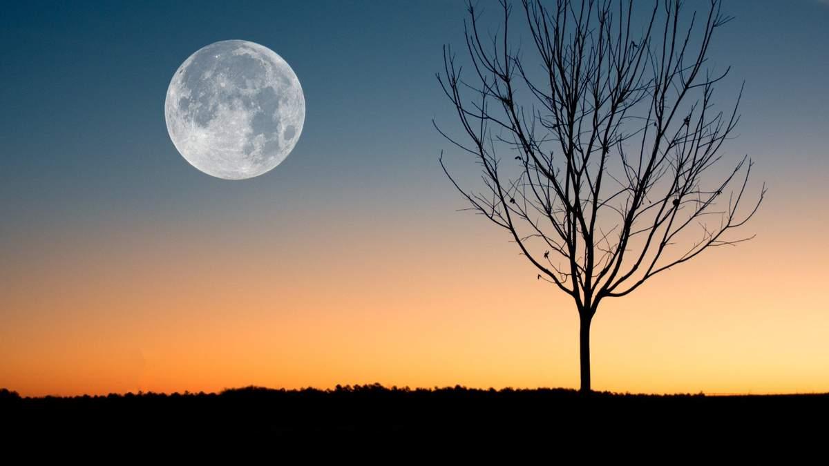 Коли повний місяць в жовтні 2020 – дата і час повного місяця