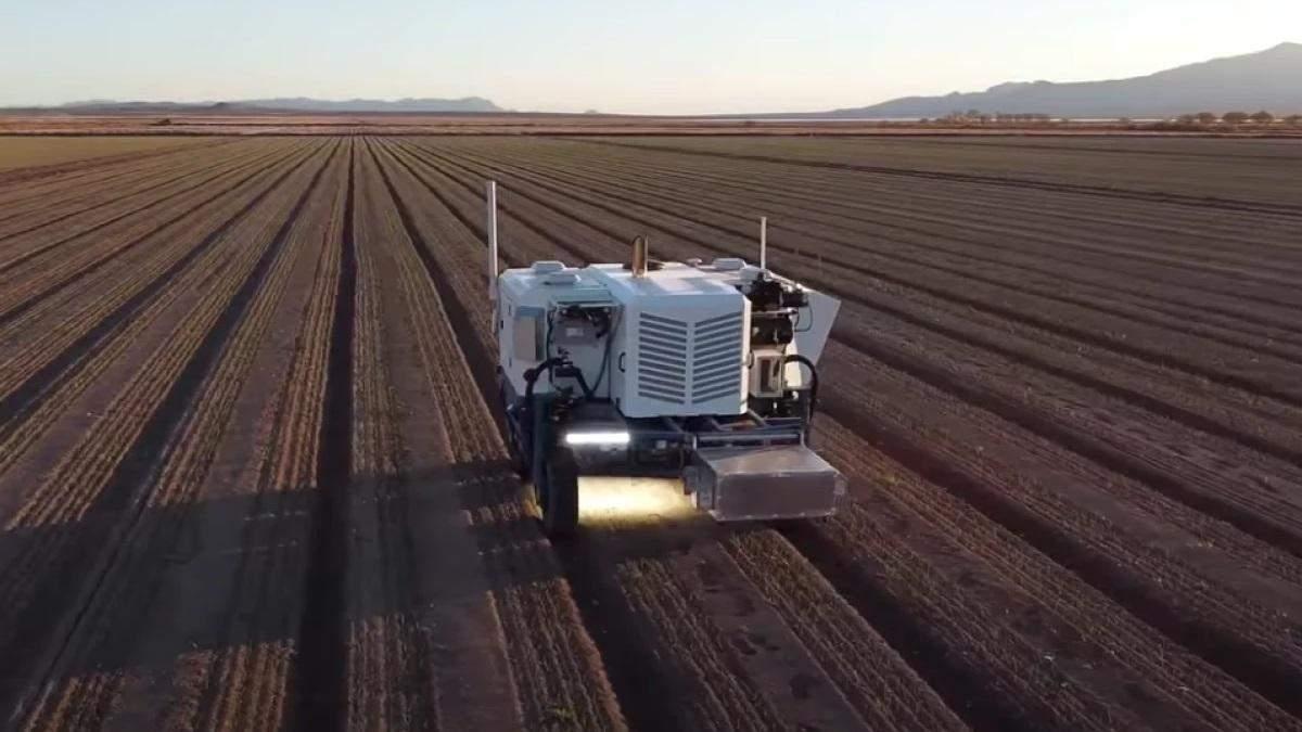 Випалює бур'яни лазерами: інженери створили сільськогосподарського робота