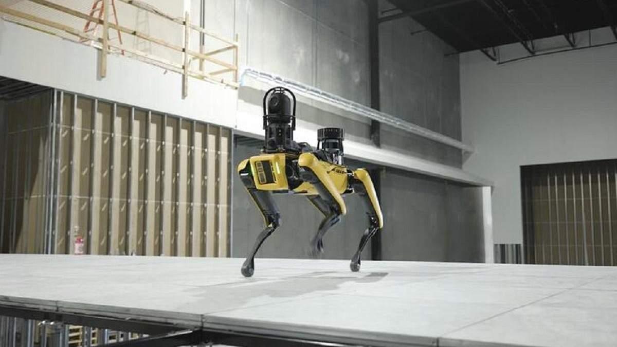 Охорона майбутнього: прокачені робособаки від Boston Dynamics патрулюватимуть дата-центри - Новини технологій - Техно