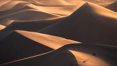 Як захиститися від піщаних дюн: відповідь науковців