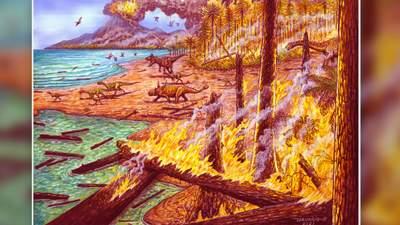 Пишні ліси Антарктиди постраждали від масштабної пожежі, яка вирувала 75 мільйонів років тому