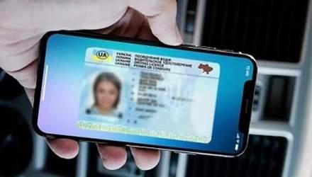 Регистрироваться на авиарейс и поезд можно будет по электронному удостоверению водителя: детали