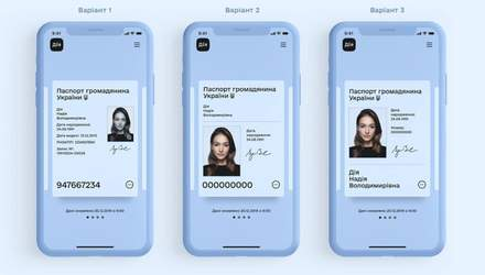 Электронный паспорт Украины: Федоров показал дизайн