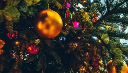Готуємось до новорічної вечірки: як гарантувати чистоту в домі