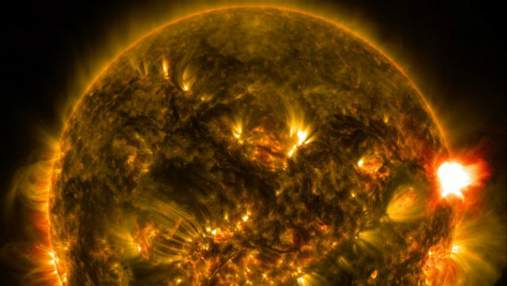 NASA показало Солнце в необычном цвете: интересный снимок
