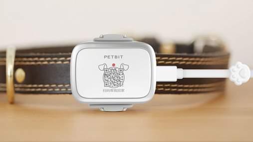 Xiaomi презентувала PetBit для відслідковування тварин: ціна приємно дивує