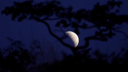 Як вплине місячне затемнення 10 січня 2020 року на знаки Зодіаку