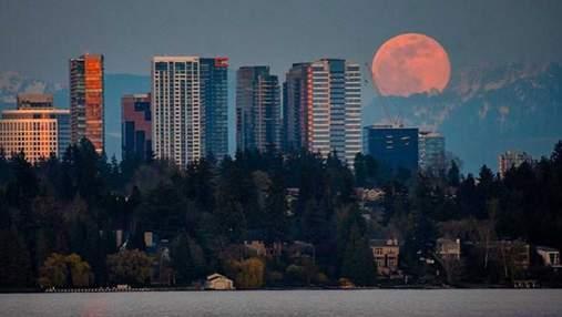 Рожевий Місяць 2020: яскраві фото та відео цього незвичного явища