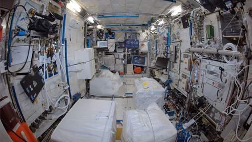 Все задля науки: астронавти протягом року не прибирали бруд в модулі МКС