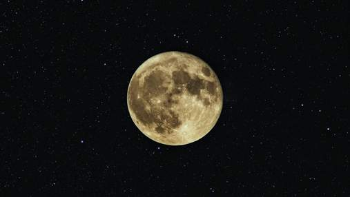 На Місяць хочуть відправити сперму та яйцеклітини людей та інших видів