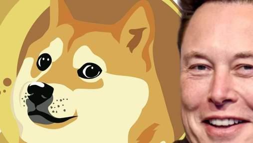 Инвестор, вкладывающий средства в Dogecoin, стал миллионером за 2 месяца: при чем здесь Маск