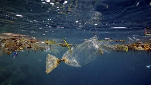 В США создали робота, который способен убирать мусор в океане