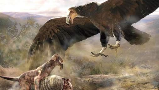 Псевдозубы, огромные когти и крылья: 7 самых больших птиц из прошлого