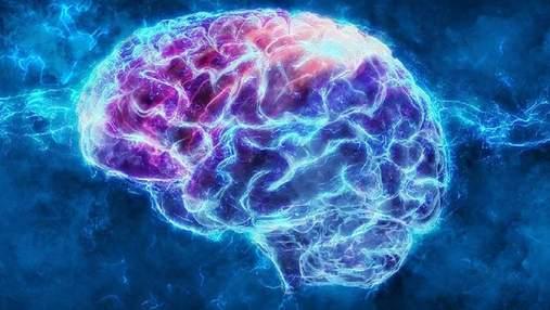 Комп'ютер навчили пророкувати вподобання людини за сигналами мозку