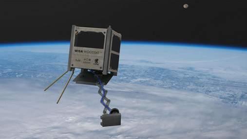Перший дерев'яний супутник відправлять у космос вже цього року
