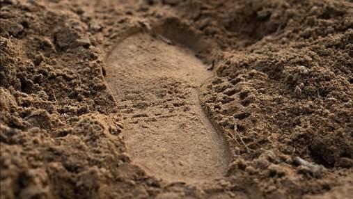 Наука против преступности: ученые могут сравнивать анализы почвы, чтобы найти преступника