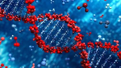 Спорт не нужен: обнаружена мутация гена, которая не позволяет набрать лишний вес