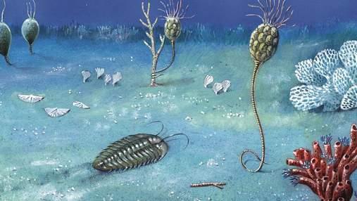 Ученые обнаружили самую длинную летопись древней Земли