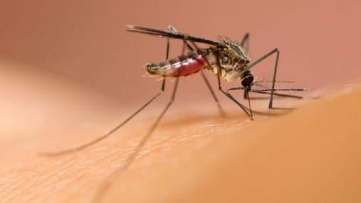 Інженери створили одяг, стійкий до укусів комарів