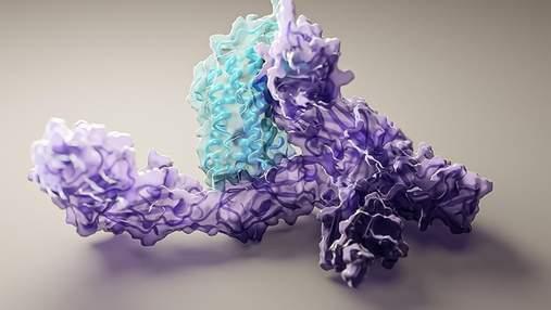 Открыт доступ к революционной технологии прогнозирования структуры белка: что это дает