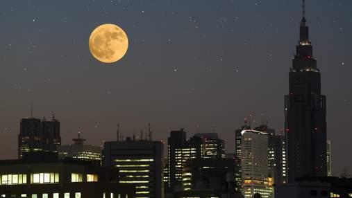 Місячний календар на серпень 2021: коли буде повня