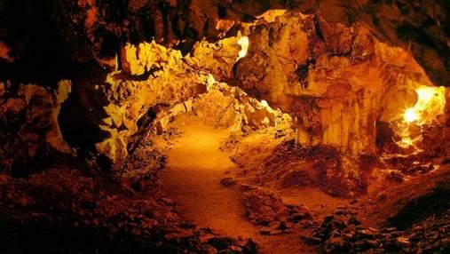 Неандертальці вміли виготовляти технологічні знаряддя для вбивства: дослідження