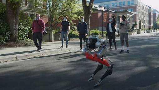 Двуногий робот пробежал пять километров на одном заряде батареи за 53 минуты