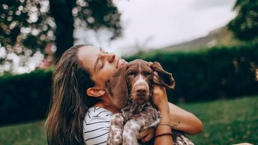 Собаки можуть визначати, коли люди їм брешуть