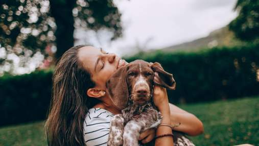Собаки могут определять, когда люди им лгут