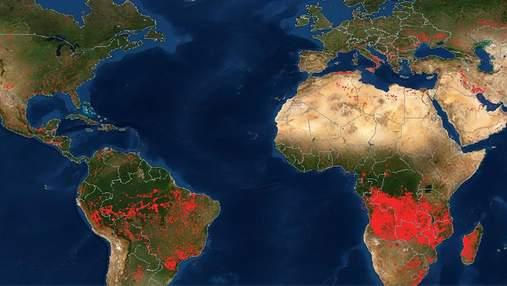 П'ять із шести континентів – у вогні: у NASA показали шокуючу карту пожеж